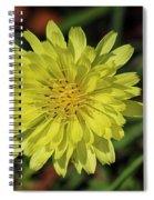 Little Wild Yellow Spiral Notebook