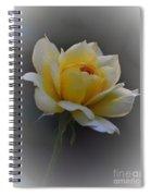 Little Yellow Rose Spiral Notebook