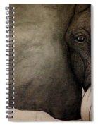 LIV Spiral Notebook