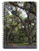 Live Oak And Spanis Moss Landscape Spiral Notebook