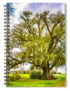 Live Oak And Spanish Moss 2 - Paint Spiral Notebook