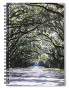 Live Oak Lane In Savannah Spiral Notebook
