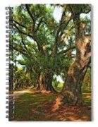 Live Oak Lane Spiral Notebook