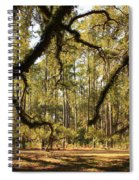 Live Oaks Silhouette Spiral Notebook