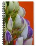 Lively Lupine Spiral Notebook
