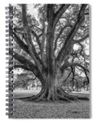 Living History Bw Spiral Notebook