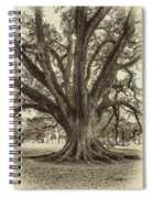 Living History Sepia Spiral Notebook