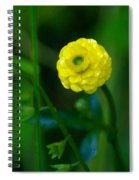 Living In The Moment Spiral Notebook