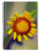 Living Sunshine Spiral Notebook