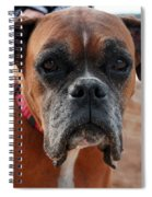Liza The Dog Spiral Notebook