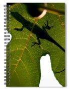Lizard On A Fig Leaf Spiral Notebook