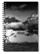 Loan Tree Spiral Notebook