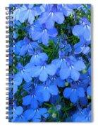 Lobelia Spiral Notebook