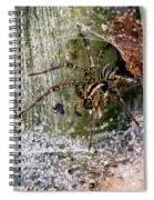 Lobo's Web Spiral Notebook