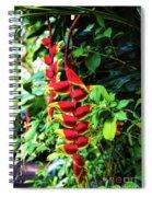 Lobster Claw Spiral Notebook