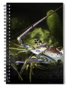 Lobster In Love Spiral Notebook
