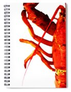 Lobster - The Left Side Spiral Notebook