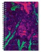 Locals 5 Spiral Notebook