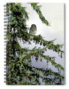 Lofty Perch Spiral Notebook