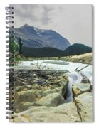 Log Jam Alley Spiral Notebook