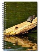 Log Turtle L 3584 Spiral Notebook
