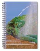 Logan Circle Fountain 3 Spiral Notebook