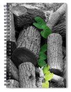 Logs Spiral Notebook