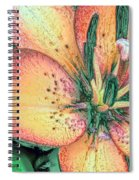 Lola Lily  Spiral Notebook