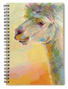 Lolly Llama Spiral Notebook