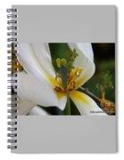 London White Tulip Spiral Notebook
