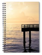 Lone Bird At Morning Spiral Notebook