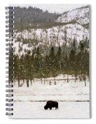 Lone Buffalo Spiral Notebook