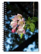 Lone Cherry Blossoms Spiral Notebook