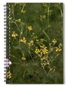 Lone Cone Spiral Notebook