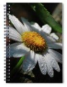 Lone Daisy Spiral Notebook