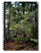 Lone Dogwood Spiral Notebook