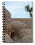 Lone Joshua Tree Spiral Notebook