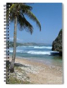 Lone Palm On Barbados Coast Spiral Notebook