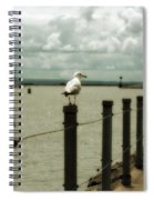 Lone Pier Seagull Spiral Notebook
