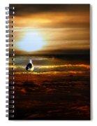 Lone Seagull Spiral Notebook