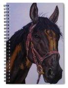 Lone Star Spiral Notebook