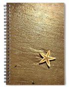 Lone Starfish On The Beach Spiral Notebook