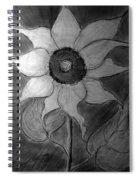Lone Sunflower Iv Spiral Notebook