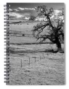Lone Tree And Cows 2 Spiral Notebook