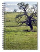 Lone Tree And Cows Spiral Notebook