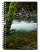 Lone Tree And Running Water Spiral Notebook