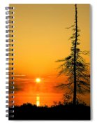 Lone Tree At Dawn Spiral Notebook