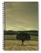 Lone Tree In The Field Spiral Notebook