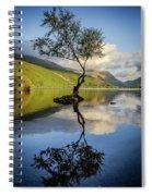 Lone Tree, Llyn Padarn Spiral Notebook