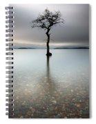 Lone Tree Loch Lomond Spiral Notebook